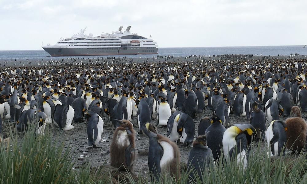 antarctica-cruise-line