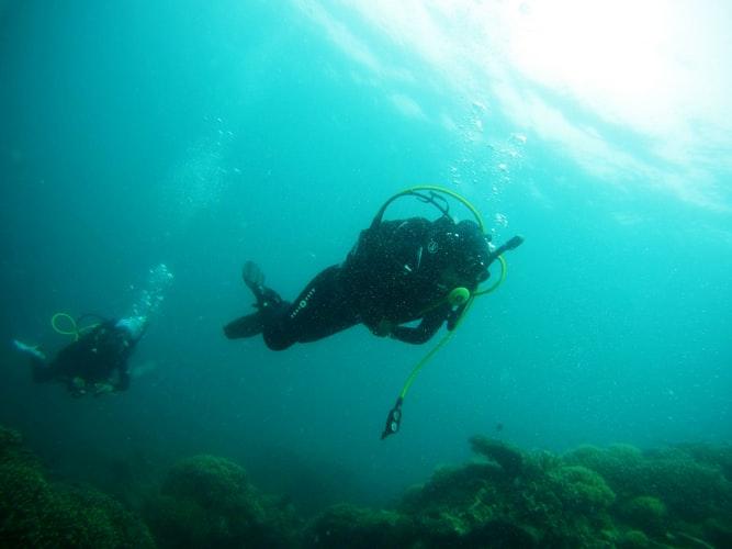 puerto-escondido-diving-1